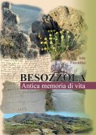 Besozzola